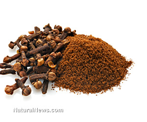 Index of wp content uploads 2014 01 for Clove oil fish