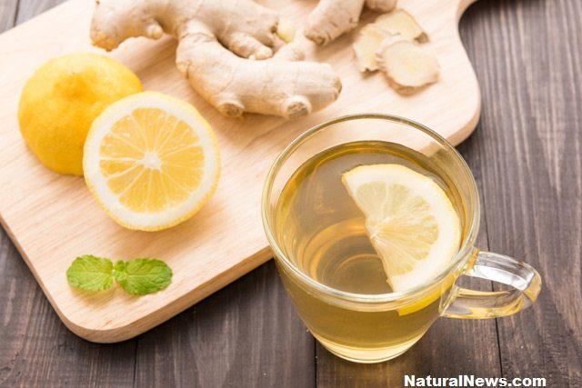 чаша-чай-лимон-резен-джинджифил-корен